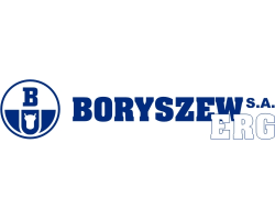 Logo Boryszew